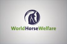 World Horse Welfare